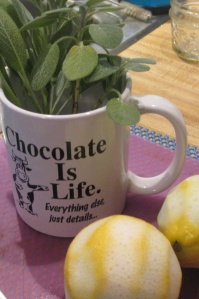 chocolate mug with sage-lemons IMG_4796