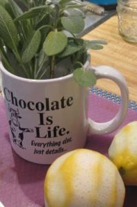 chocolate mug with sage-lemons IMG_4796