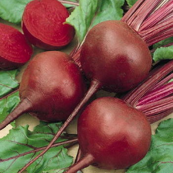Beets image from Swallowtail Garden seeds