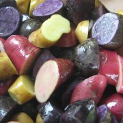 close-up of cut purple, pink/red, and yellow potatoes
