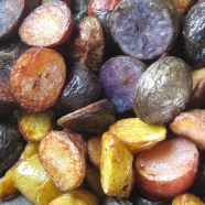 roasted potatoes--browned edges of the red, yellow and purple  ones.