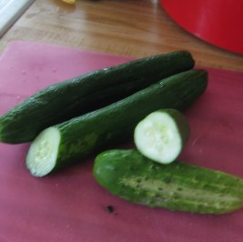 pickling and Amira cucumbers side by side