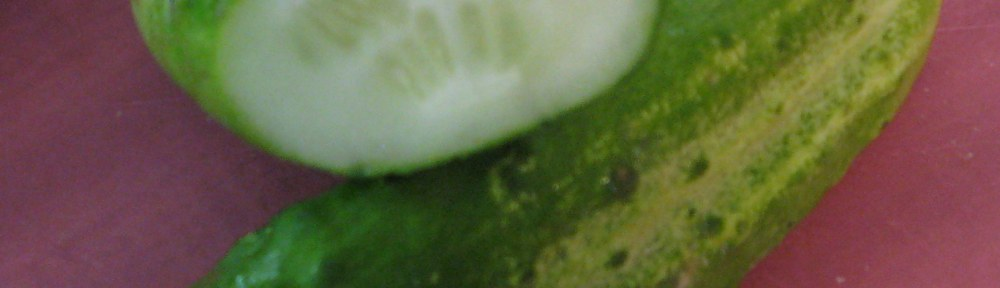 short chubby pickling cucumber with typical coloration