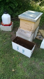 closed hive and nuc box
