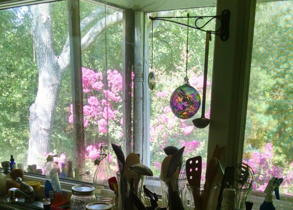 my kitchen window
