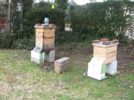 two bee hives