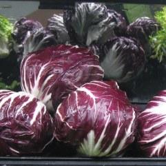 radichio, fresee, lettuce